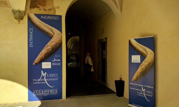 5 Most important museums to visit in Valdarno