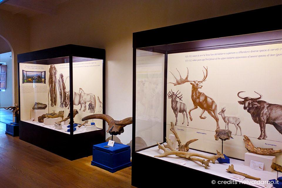 I musei da visitare nel Valdarno Superiore
